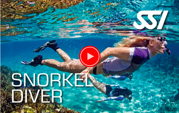 snorkeling in eco diver beach