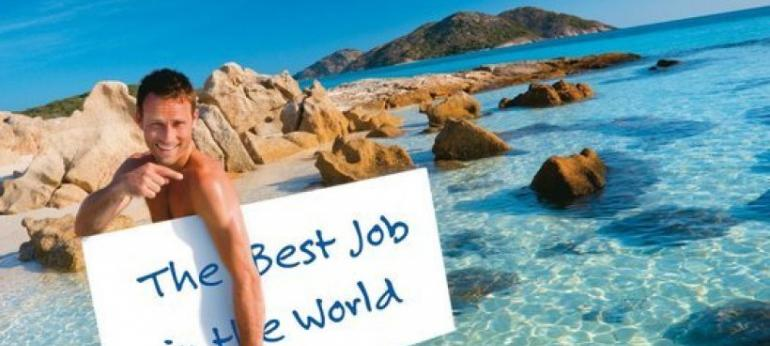 Eco Diver Job offers