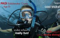 PADI buble maker online booking in havelock with ECO DIVER